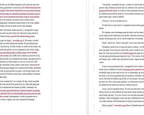 redigeren redactie schrijven cathinca van sprundel